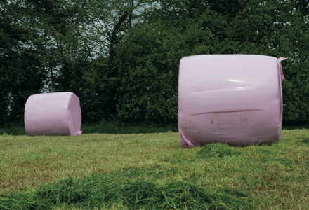 Pink wrapped bales listing