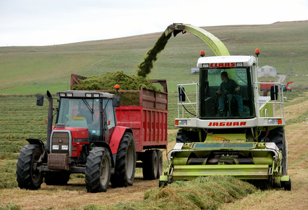 Cutting silage at folsetter 1 listing